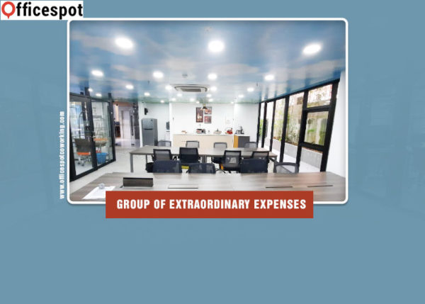 Group of extraordinary expenses